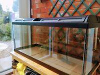 Fish tank 160 liter
