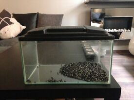 Glass Tank £20!