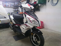 Lexmoto FMR 50cc Moped