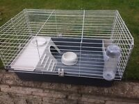 Guinea pig cage complete with extras