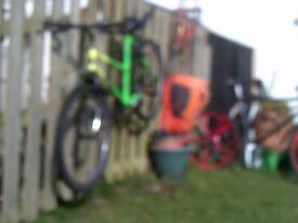 X2 Refurbished Ladies Cycles XMAS Pressy