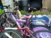 Joblot of adult and child's bikes.