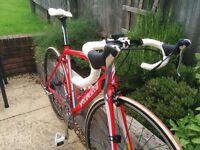 Specialized Allez Elite Road Bike 2011 Medium (54cm)