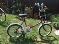 Stowaway Bike