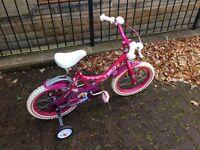 Raleigh Molly girls bike