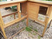 GUINEA PIG/RABBIT HUTCH, £20.00 ono