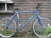 Mens road bike