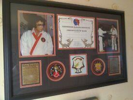 Elvis Presley Framed Karate Display. Gold Limited Edition Collectible.