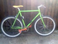 Alternative Speedsta – Single Speed Fixed/free-wheel Bike bicycle