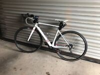 13 intuition carbon road bike