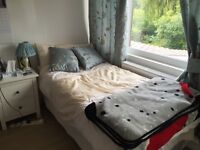 Visitor Divan Bed