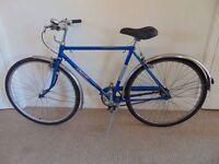 """Raleigh Traveller 19.5"""" Commuter/Town Bike"""