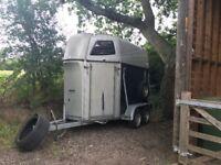 Lightweight sluis trailer for sale