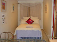 Large Double Room £95 per week including bills - only vegetarian food allowed in the house