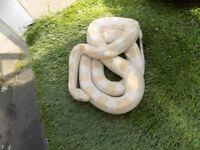 Albino Black rat Sake
