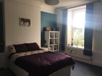 Large double bedroom to rent in Penarth houseshare