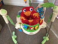 Rainforest jumperoo- good condition