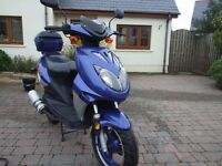 Direct Bikes Ninja 49cc Moped