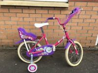 Raleigh Daisy Girls Bicycle Used