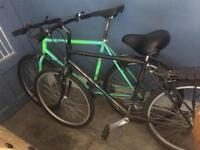 2 x Raleigh Bikes for Sale. Raleigh Lizard!!