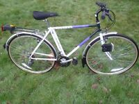 """Raleigh Pioneer 19"""" Bike - 1991 - Immaculate - Fully Serviced - 30 Day Warranty"""