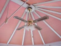 CONSERVATORY COMBINED FAN AND LAMP