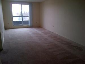 Beautiful 1 & 2 Bedroom Suites - Ask about our Incentives! Kitchener / Waterloo Kitchener Area image 4