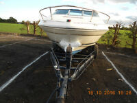 SEA RAY 20 FOOT SPORTS / POWER CRUISER WITH INBOARD V8 ENGINE AND BRAKED TRAILER