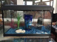 60L AQUARIUM COMPLETE WITH FILTER, LIGHT, CLEAN BLUE GRAVEL, THERMOMETER AND A FEW EXTRAS