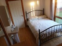 Annadale Ave., ORMEAU : DOUBLE room with SINK on ground floor rear of property
