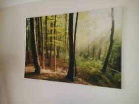 Next woodland canvas