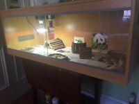 VIVARIUM- good as new, open to offers