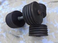 2x50kg dumbbells weights