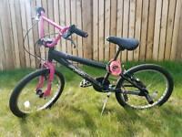 2 girl bikes BMX and classic