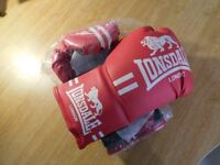 Lonsdale - Contender Boxing Glove (S/M)