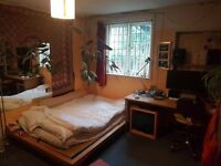 Double room in glorious period house-share with garden near churchill square, lovely old house.