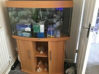 JUWEL 180 VISION AQUARIUM bow fronted with beech cabinet for sale