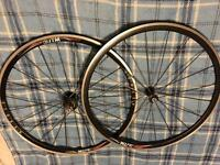 ITM aero 3.0 wheelset campagnolo front and rear wheel