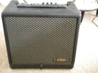 Headway Shireking 60 watt acoustic amplifier