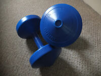 York Weights pair: 4.5KG (10lb) dumbell weights x 2.