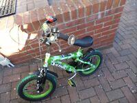 Boys Green Raleigh Bike