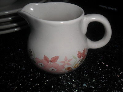 BOOTS HEDGE ROSE MILK JUG
