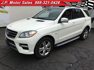 2012 Mercedes-Benz ML350 -