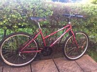 Ladies hybrid bike