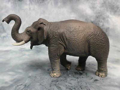 CollectA NIP * Asian Elephant * Wildlife 88486 Replica Model Toy Figurine