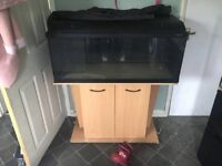3ft tank with stand