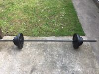 BARBELL WITH 39KG OF CAST IRON WEIGHTS