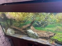 240 litre juwel Rio fish tank full set up open to offers