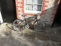 Woman's Edinburgh Co-operative Courier Bicycle with Lock for Sale