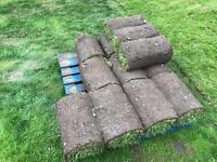 10 rolls of turf. 10sq metres